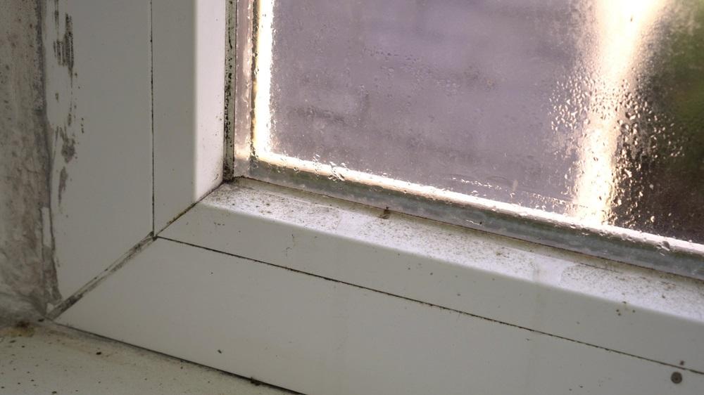 Voorkom schimmels op je raamkozijn